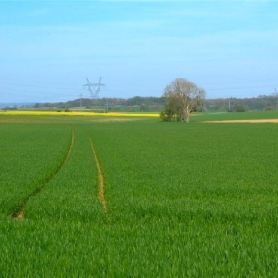 Alex agriculture Vienne