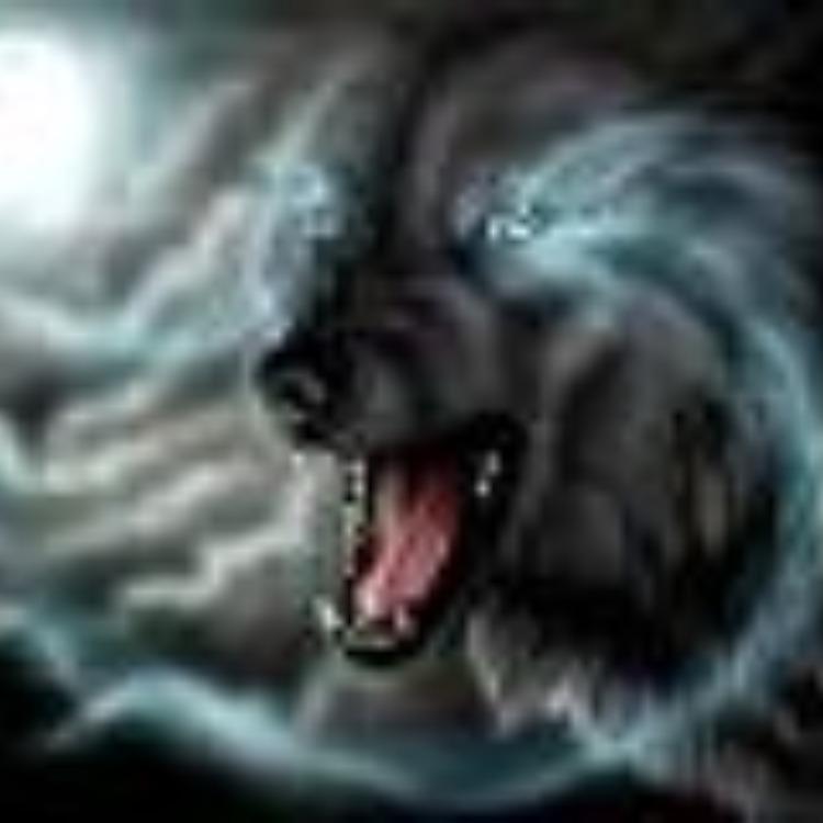 Dark_Night_Wolf
